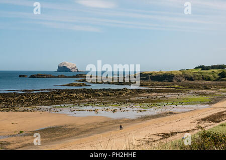 North Berwick, East Lothian, Scotland, UK, 30th August 2018. UK weather: A warm and sunny day at the end of the Summer in the seaside town of North Berwick. A view of Bass Rock in the Firth of Forth on the horizon, the largest gannet colony. The gannets will be ready to leave in a month's time - Stock Photo