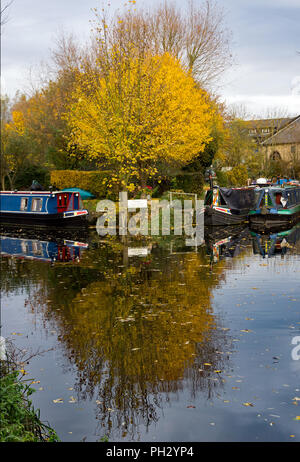 Canal boats  moored on the River Stort by the Maltings moorings in Sawbridgeworth, Hertfordshire - Stock Photo