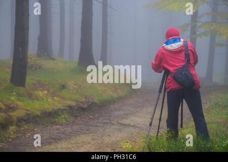 Photographer with tripod in a dark magic forest in Czech Republic in autumn - Stock Photo