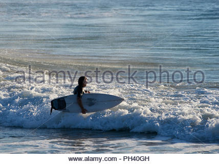 A man in a wet-suit, walks into the ocean with a surfboard under his arm, going for an early-morning surf; at Turners Beach, Yamba, NSW, Australia. - Stock Photo