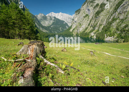 The lake Obersee in the area of the mountain pasture Fischunkelalm above the Koenigssee. Berchtesgaden National Park, Upper Bavaria, Germany - Stock Photo