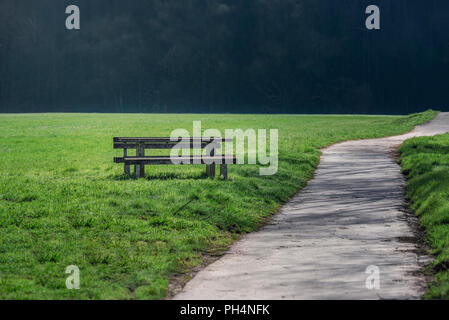 An alley for walking or running, crossing a green meadow and a wooden bench and a table on the side, on a  sunny day. - Stock Photo