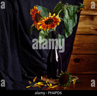Sunflower in a bottle, still life. Several flowers in a dark bottle on a rustic background. - Stock Photo