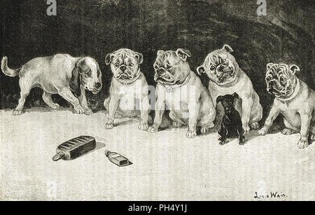 Throw physic to the dogs, I'll none of it.   Dogs looking warily at medicine bottles, drawn by by Louis Wain.  An illustration of a quote from Macbeth by Shakespeare - Stock Photo