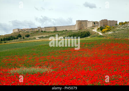The Spanish walled medieval town of Uruena in the region of Valladolid Castille y Leon Spain known as Villa del Libro the town of books - Stock Photo