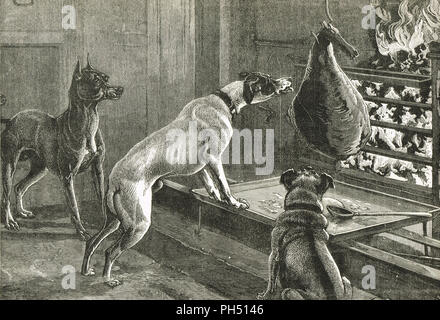 Dogs stealing a joint of meat from the fire - Stock Photo