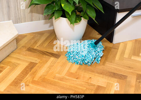 cleaning floor at home - Stock Photo