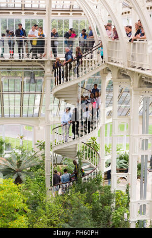 View of iron spiral staircase from the balcony of the restored / after the 2018 restoration of Victorian Temperate House at Royal Botanic Garden, Kew London United Kingdom UK - Stock Photo