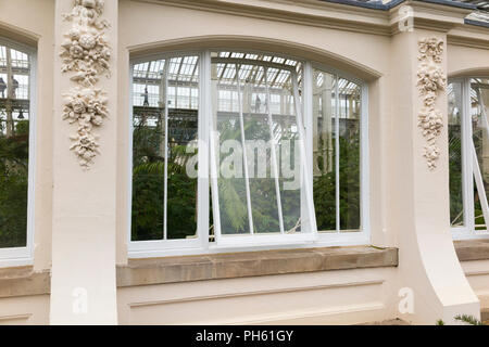 New glazing wooden / wood / timber replacement glazed windows in the restored Victorian Temperate House at the Royal Botanic Garden, Kew. London. UK - Stock Photo
