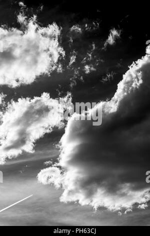 Contrails from jet plane; puffy white cumulus clouds against a clear blue central Colorado sky; USA - Stock Photo