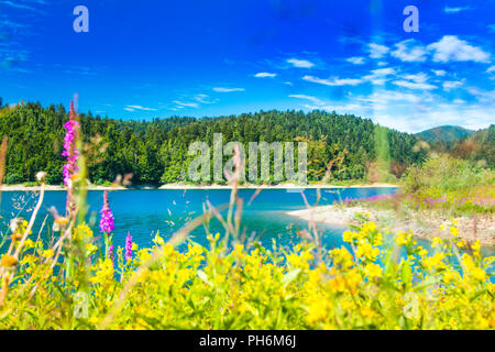 Beautiful blue Lokvarsko lake in colorful mountain landscape, Lokve, Gorski kotar, Croatia - Stock Photo