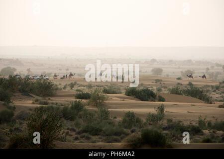 Camel trekking on the Thar desert in Jaisalmer, Rajasthan, India - Stock Photo
