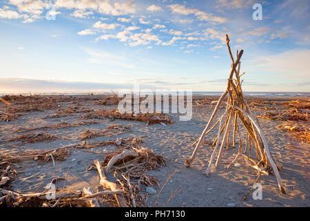 Driftwood on the beach at Hokitika, West Coast, New Zealand. - Stock Photo