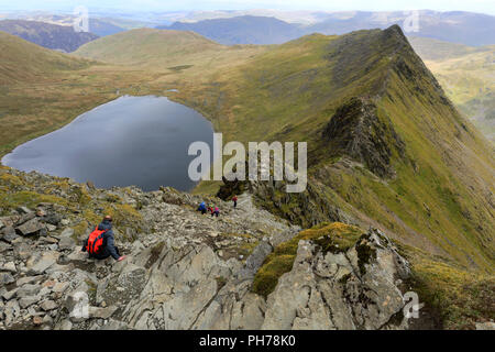 Walkers on Striding Edge ridge on the way to Helvellyn fell, Lake District National Park, Cumbria, England, UK  Striding Edge is a classic Grade 1 scr - Stock Photo