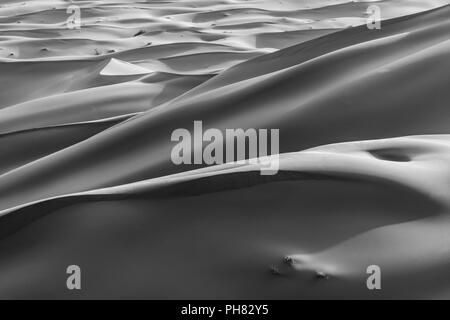 Sand dunes in the desert, monochrome, Erg Chebbi, Merzouga, Sahara, Morocco - Stock Photo
