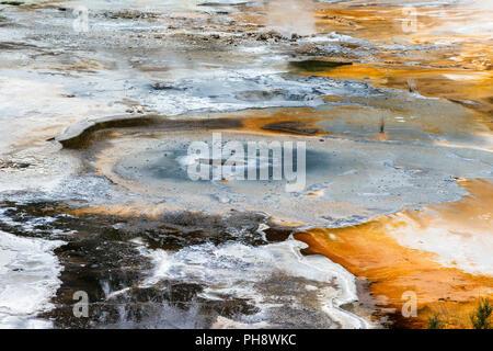 Artist's Palette, Orakei Korako geothermal Park,NZ - Stock Photo