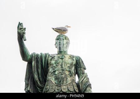Seagull on the statue of Roman emperor Nerva, or Marcus Cocceius Nerva Caesar Augustus, in Via dei Fori Imperiali street - Stock Photo