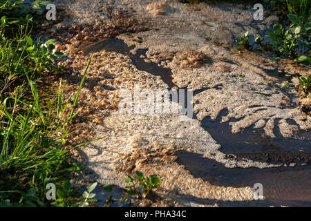 A side view of foam scum floating on top of water at the bottom of a flowing river - Stock Photo