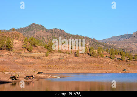 Dark Water Lake in Gran Canaria - Stock Photo