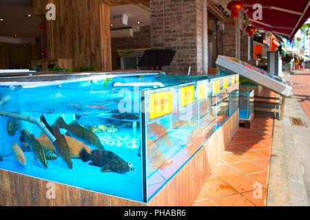 Fish restaurant in Singapore - Stock Photo