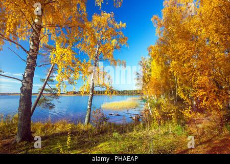 Autumnal Park. Autumn Trees and lake - Stock Photo
