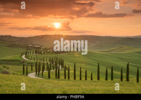 Sunset over the Agriturismo Baccoleno and winding path with cypress trees, Asciano in Tuscany, Italy, Europe - Stock Photo