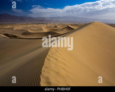 Expansive View of Dune Field, Mesquite Dunes, Death Valley National Park - Stock Photo
