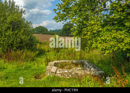 The Virtuous Well at Trellech Monmouthshire - Stock Photo