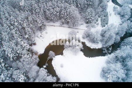 White snowy trees aerial view. Winter forest covered by snow view from above. Vivid christmas background. - Stock Photo