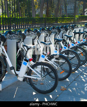 Lots of bycicles for rent - Stock Photo