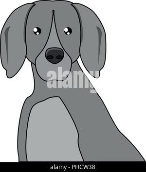 weimaraner dog icon over white background, vector illustration - Stock Photo