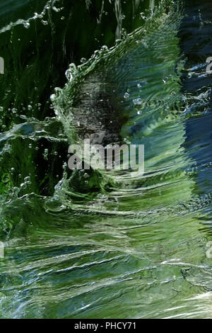 Water, one of the four elements - Stock Photo