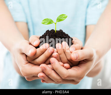 Human hands holding green sprout leaf growth at dirt soil - Stock Photo