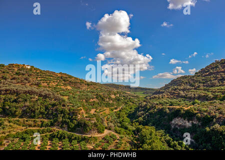 Olive groves on hills in Crete, Greece - Stock Photo
