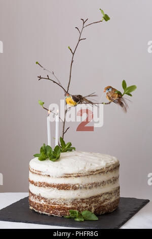 The Top Vie Delicious Birthday Cake With Branch Of A Tree Birds Candles And Number 2 As