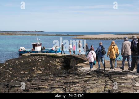 Visitors boarding Billy Shiel's boat Glad Tidings at Inner Farne, Farne Islands, Northumberland, England, UK - Stock Photo