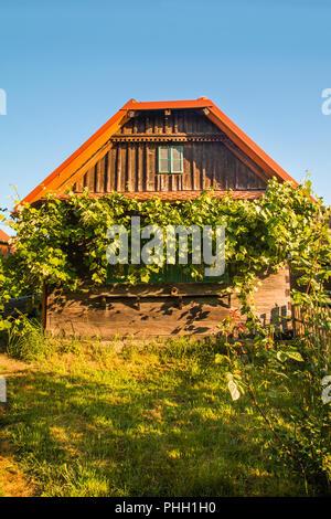 Idyllic old traditional wooden house with bird home and wine plant in Lonjsko polje, Croatia - Stock Photo