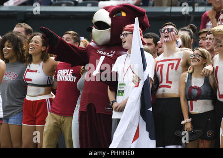 Philadelphia, Pennsylvania, USA. 1st Sep, 2018. Temple mascot and fans before the game between Temple and Villanova at Lincoln Financial Field in Philadelphia PA Credit: Ricky Fitchett/ZUMA Wire/Alamy Live News - Stock Photo