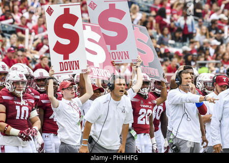 Philadelphia, Pennsylvania, USA. 1st Sep, 2018. Temple's siseline in action during the game between Temple and Villanova at Lincoln Financial Field in Philadelphia PA Credit: Ricky Fitchett/ZUMA Wire/Alamy Live News - Stock Photo