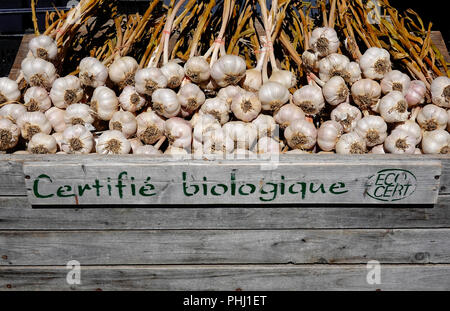 Garlic on sale at a farmers market in Montreal - Stock Photo