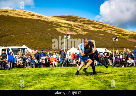 Ennerdale, Whitehaven, Cumbria, UK. 29th August 2018. The community of Ennerdale Water in the Lake District hold their annual agricultural show. Embed - Stock Photo