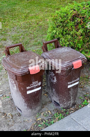 Brown bins for the collection of compost in Montreal, QC, Canada - Stock Photo