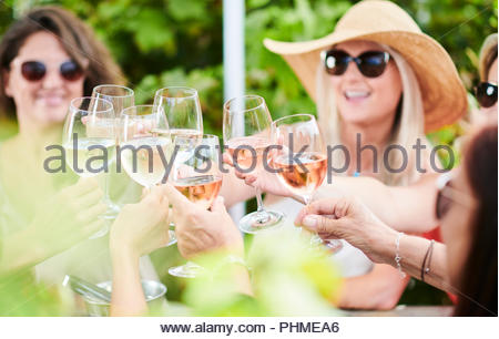 Friends making celebratory toast during lunch - Stock Photo