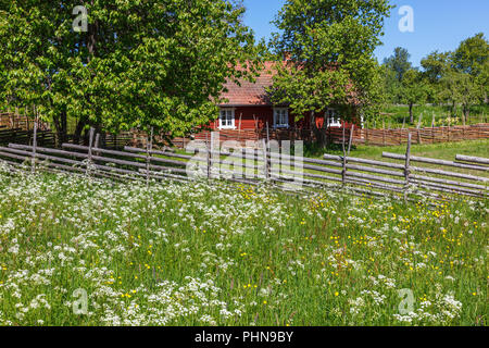 Blooming summer meadow in a rural old countryside - Stock Photo