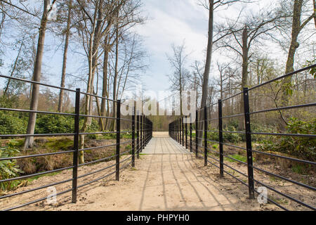 Path with metal bridge in dutch forest - Stock Photo