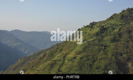 Annapurna Conservation Area, Nepal. Steep hill with terraced fields. - Stock Photo