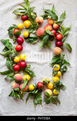 Fresh farm peaches laid our on a linen cloth - Stock Photo