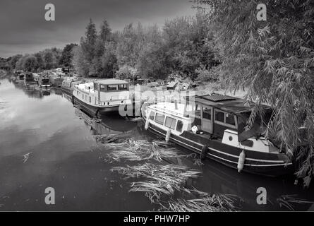 River boats moored, and double moored, at Sawbridgeworth on the River Stort, in a fast flowing river. - Stock Photo