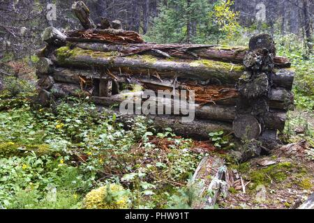 Ruins of old log cabin in forest hiking trail from bygone days of Kananaskis Country, Canadian Rocky Mountain - Stock Photo