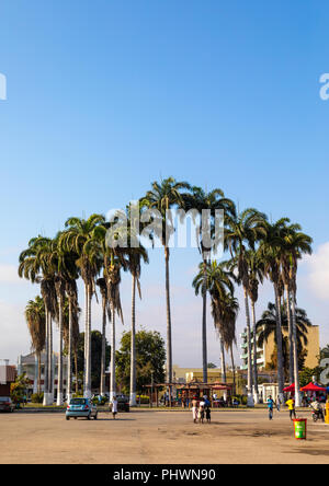 Palm trees on a square, Benguela Province, Benguela, Angola - Stock Photo